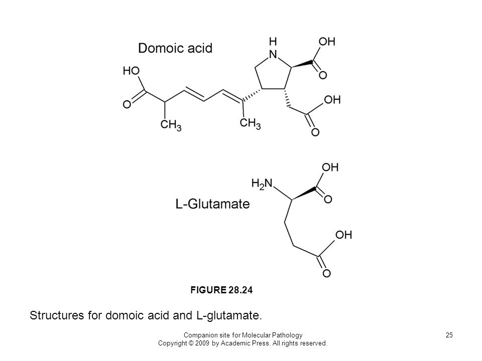 Structures for domoic acid and L-glutamate.