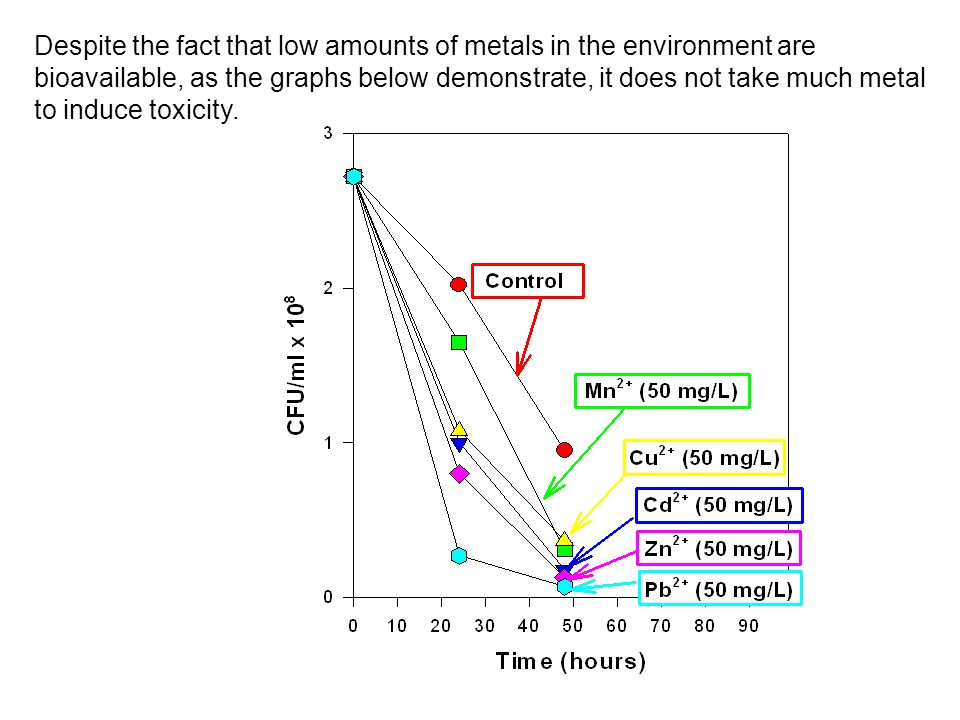 Despite the fact that low amounts of metals in the environment are bioavailable, as the graphs below demonstrate, it does not take much metal to induce toxicity.