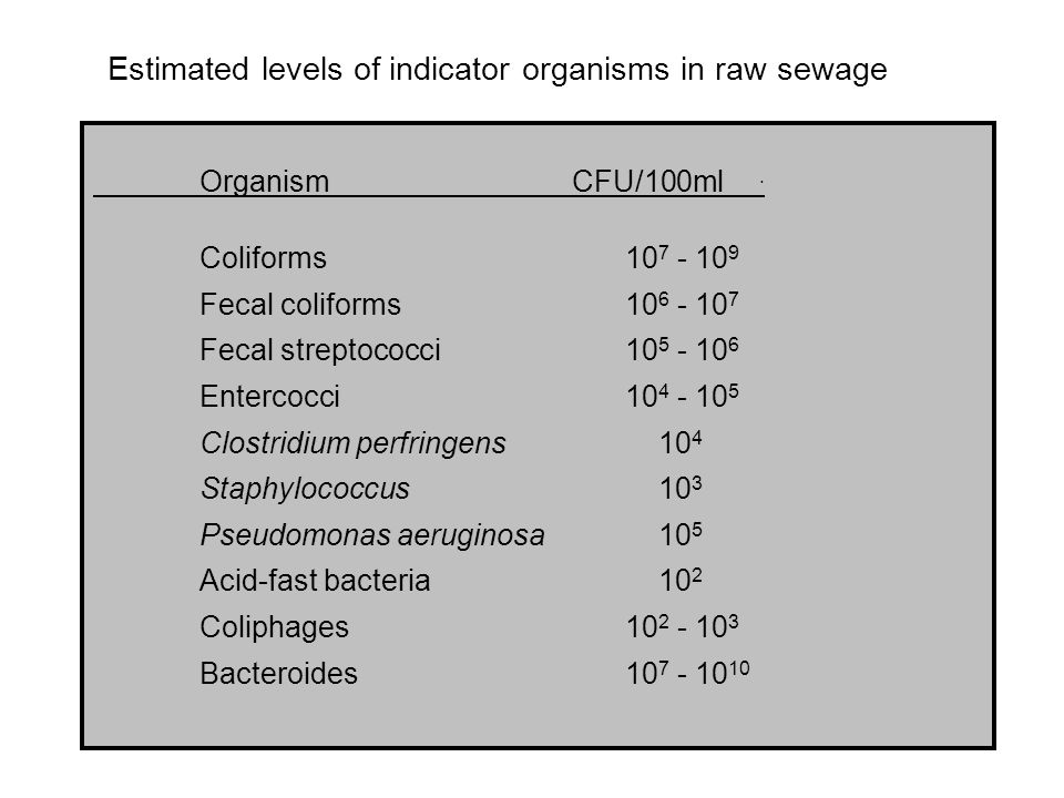 Estimated levels of indicator organisms in raw sewage