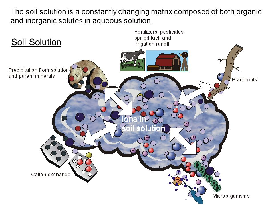 The soil solution is a constantly changing matrix composed of both organic and inorganic solutes in aqueous solution.