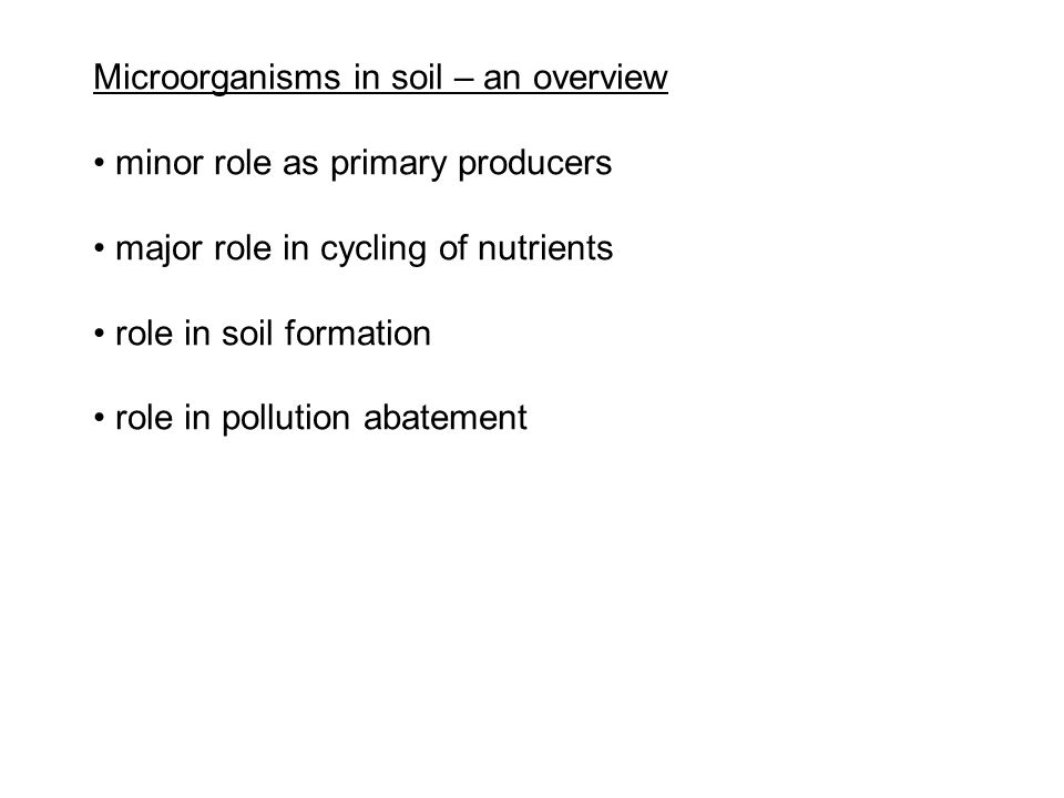 Microorganisms in soil – an overview