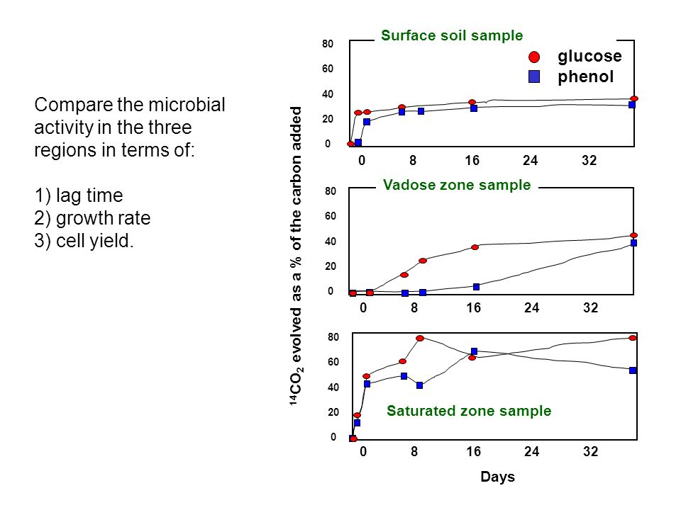 Compare the microbial activity in the three regions in terms of: