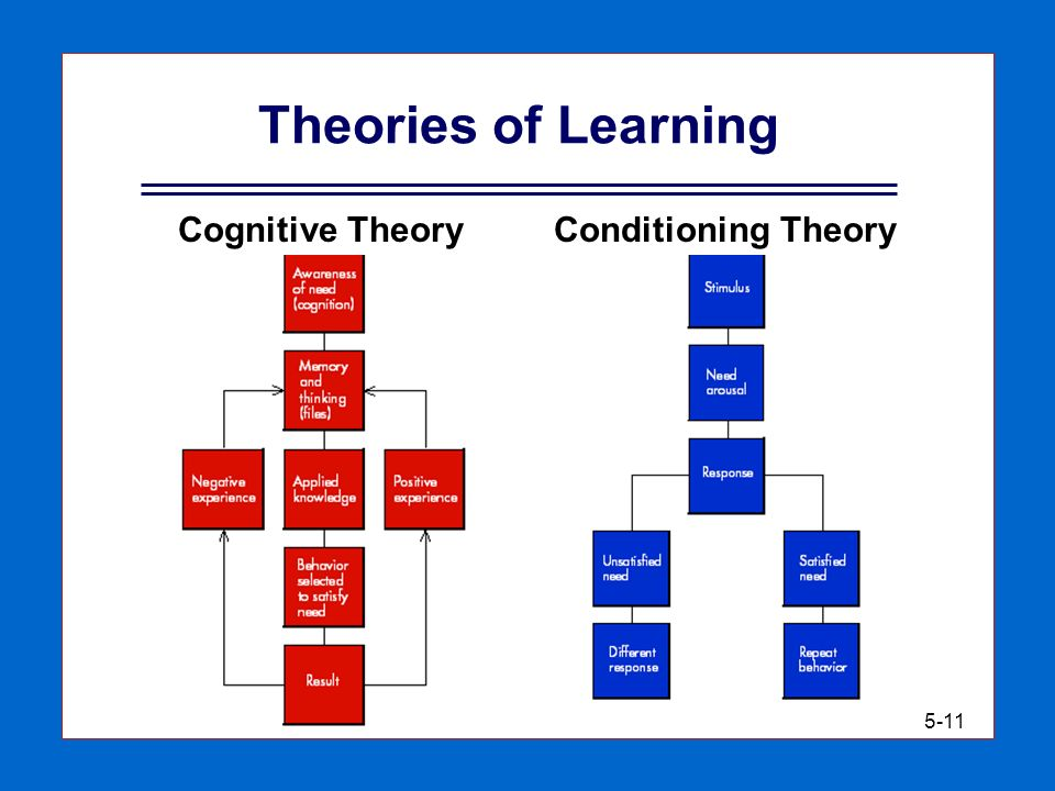 cognitive learning theory essay Access to over 100,000 complete essays and term papers the other type of cognitive learning theory is social cognitive cognitive-behavioral theory.