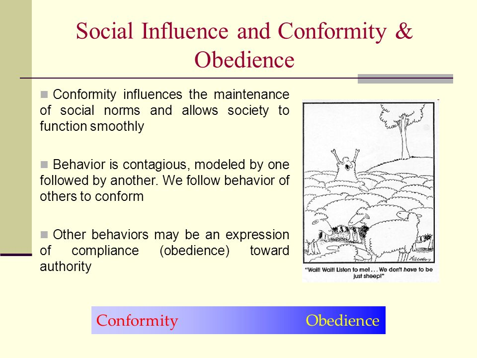 social biases and influences of conformity and obedience Compliance, obedience and conformity are the three forms of social influences processes which can affect the way an individual behaviour in a social setting, all the way from following fashions and unwritten social norms, to committing immoral acts just because the individual was ordered to do so by someone with an authority position.