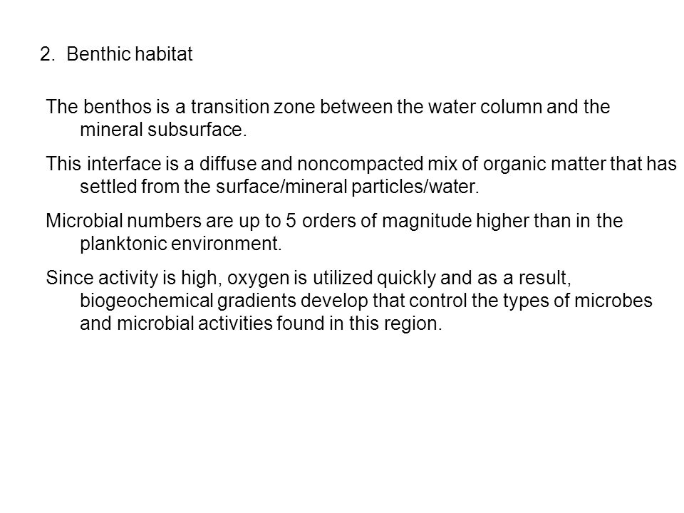 2. Benthic habitat The benthos is a transition zone between the water column and the mineral subsurface.