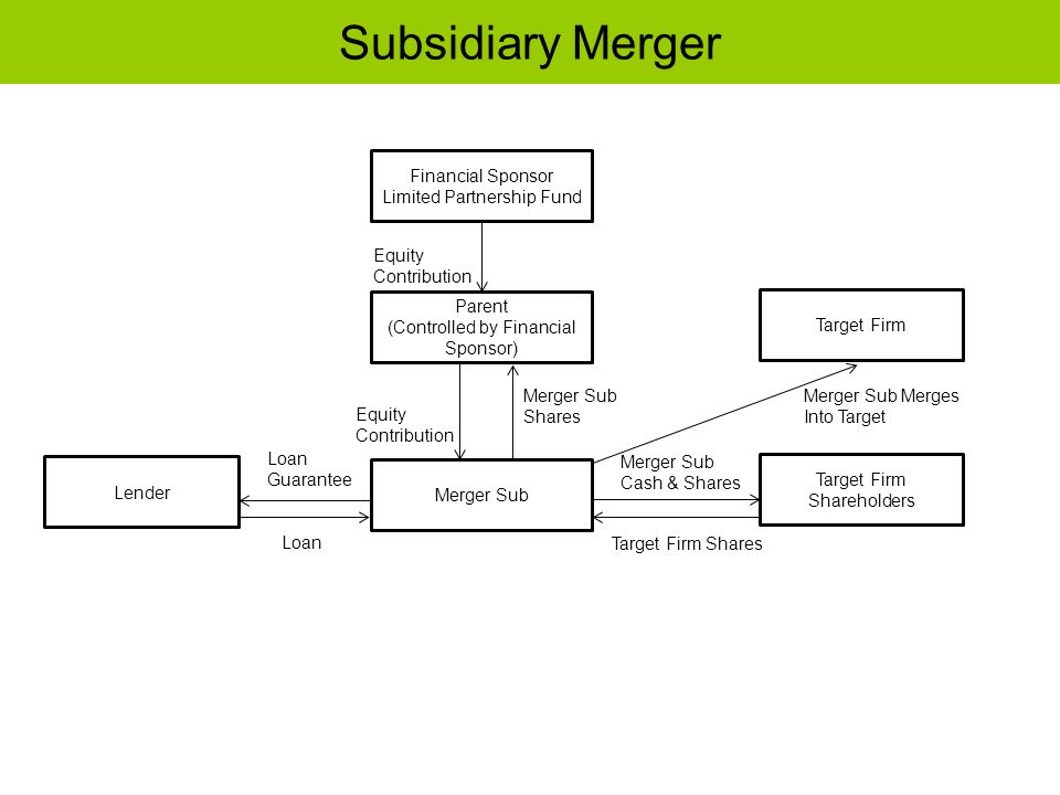 Subsidiary Merger Financial Sponsor Limited Partnership Fund