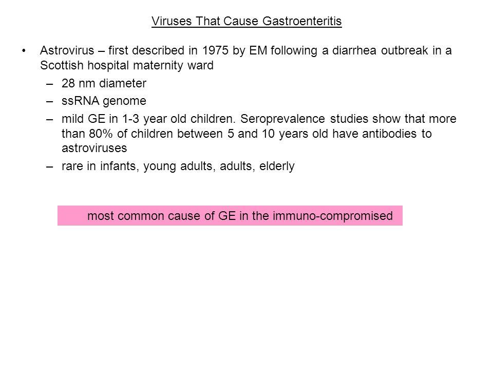 Viruses That Cause Gastroenteritis