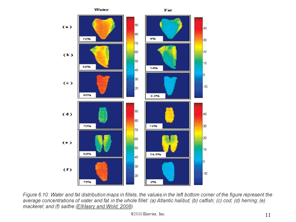Figure 6.10: Water and fat distribution maps in fillets, the values in the left bottom corner of the figure represent the average concentrations of water and fat in the whole fillet: (a) Atlantic halibut; (b) catfish; (c) cod; (d) herring; (e) mackerel; and (f) saithe (ElMasry and Wold, 2008).