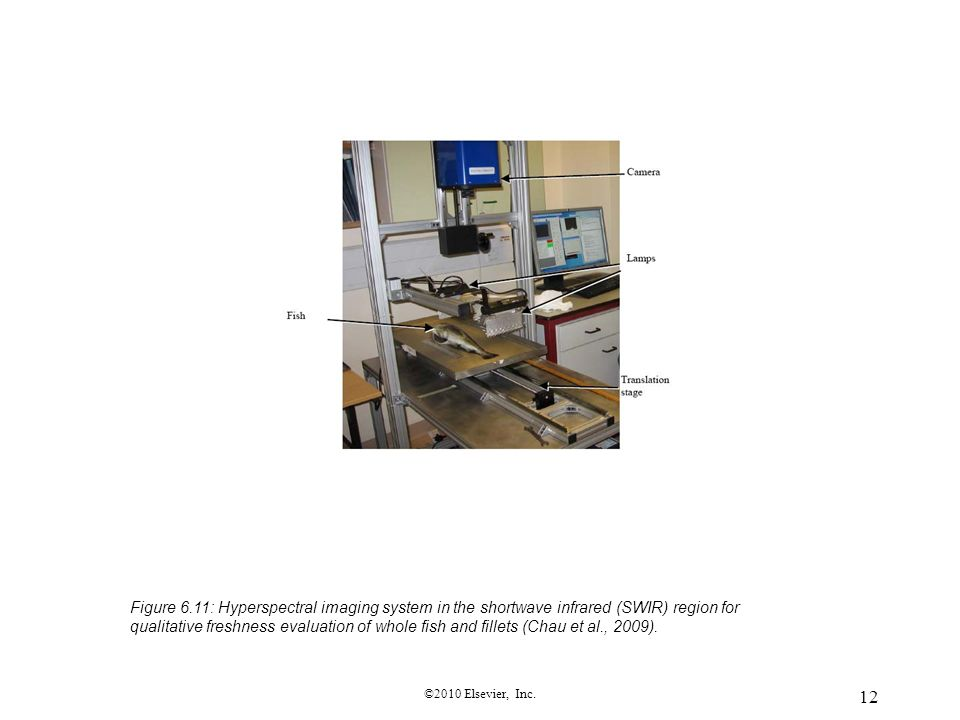 Figure 6.11: Hyperspectral imaging system in the shortwave infrared (SWIR) region for qualitative freshness evaluation of whole fish and fillets (Chau et al., 2009).