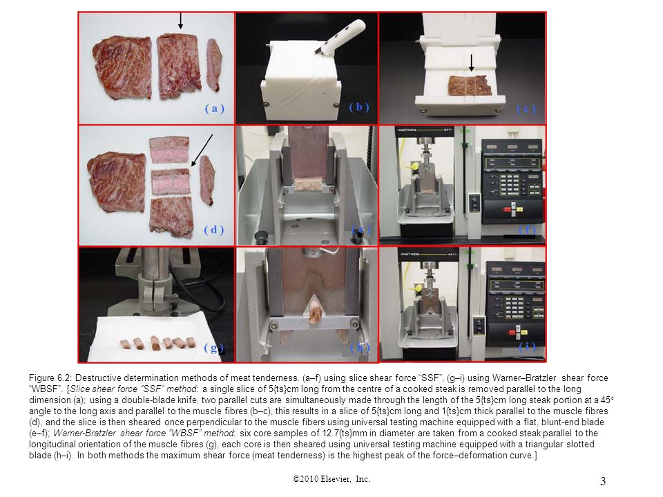 Figure 6. 2: Destructive determination methods of meat tenderness