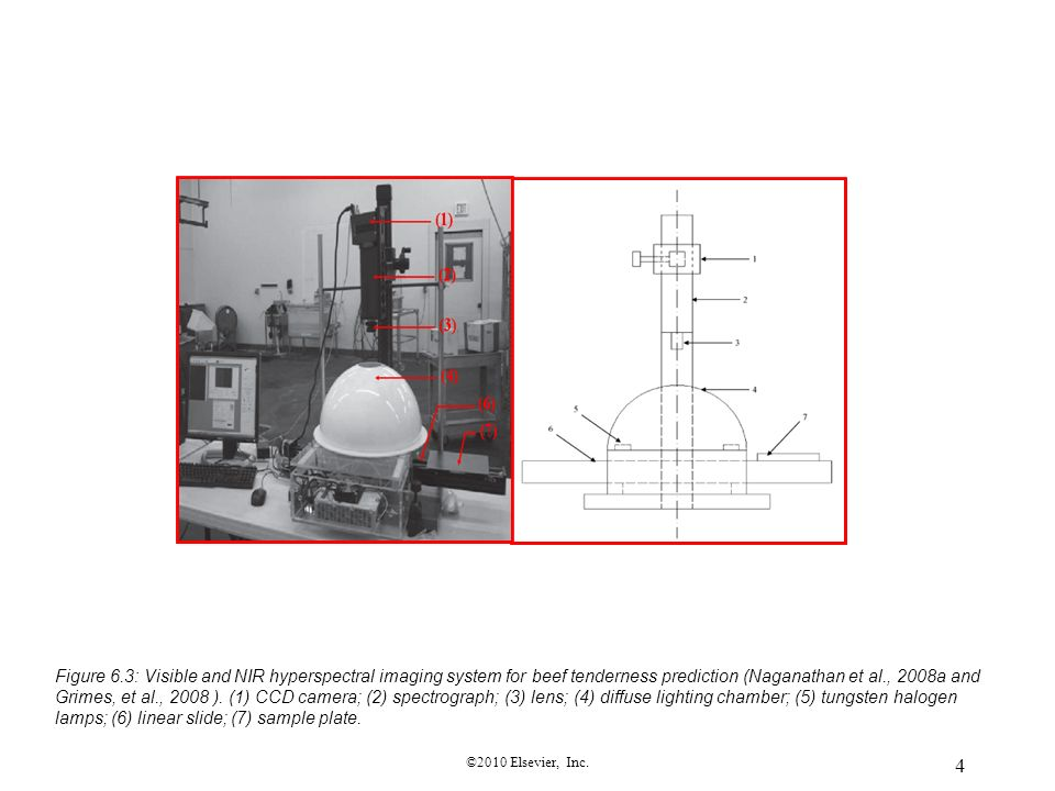 Figure 6.3: Visible and NIR hyperspectral imaging system for beef tenderness prediction (Naganathan et al., 2008a and Grimes, et al., 2008 ). (1) CCD camera; (2) spectrograph; (3) lens; (4) diffuse lighting chamber; (5) tungsten halogen lamps; (6) linear slide; (7) sample plate.