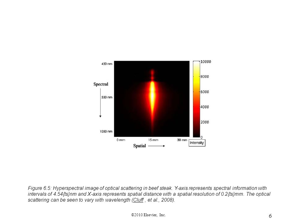 Figure 6. 5: Hyperspectral image of optical scattering in beef steak
