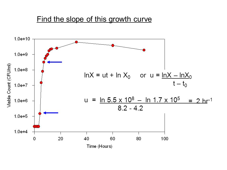 Find the slope of this growth curve