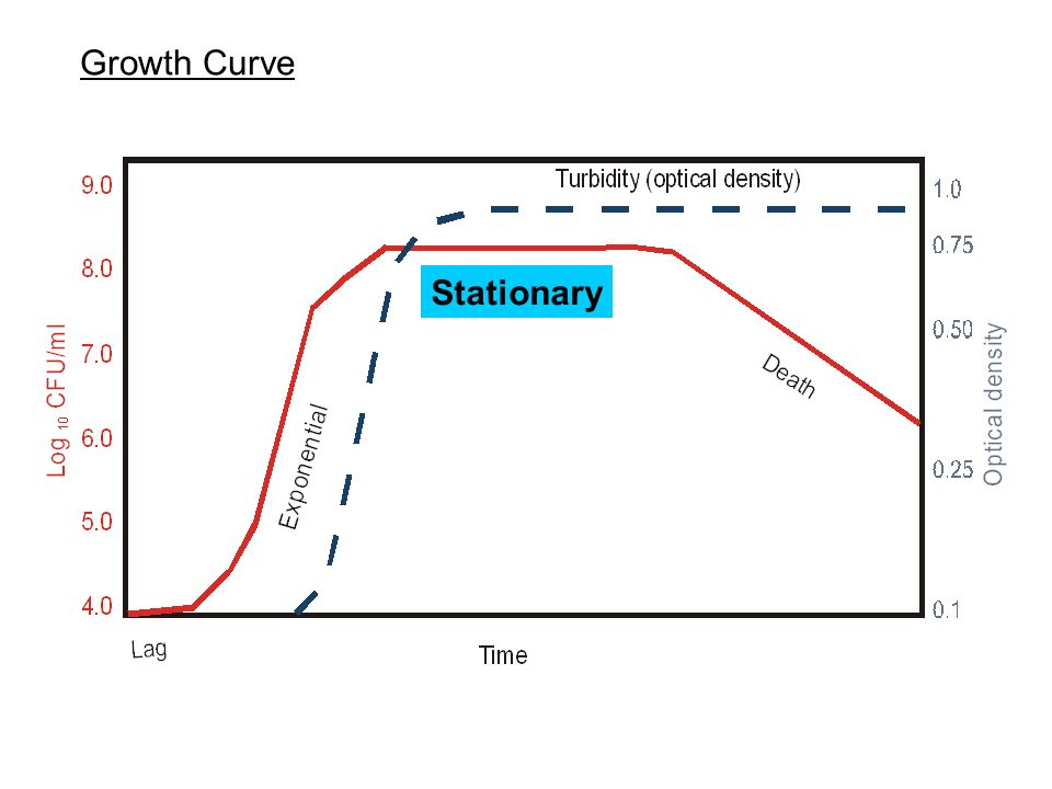 Growth Curve Stationary