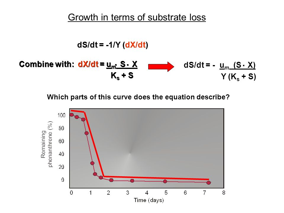 Growth in terms of substrate loss
