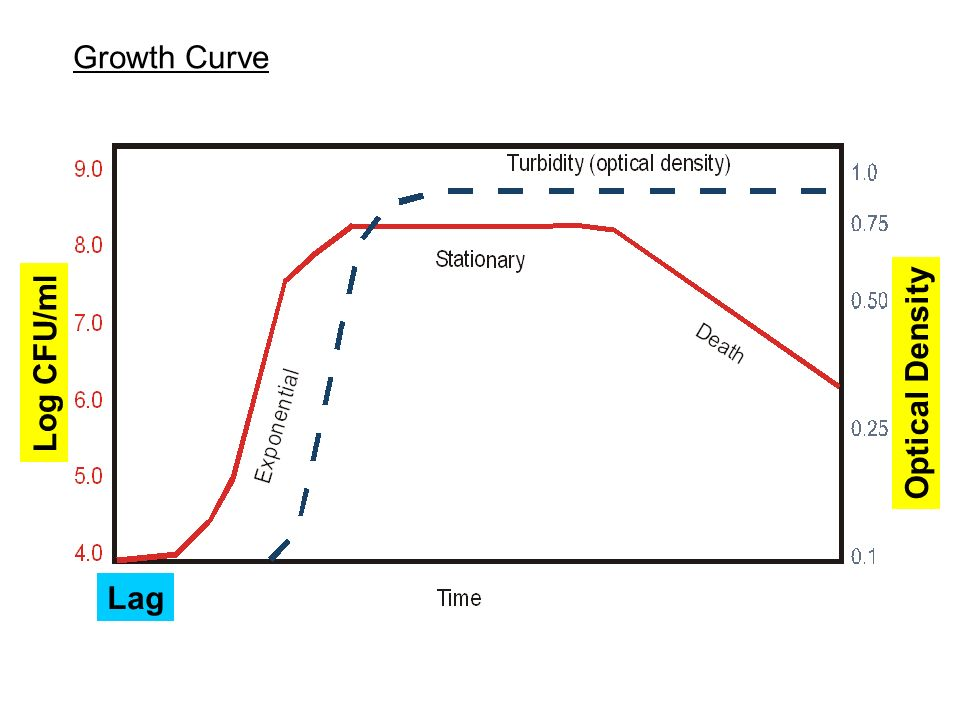 Growth Curve Log CFU/ml Optical Density Lag