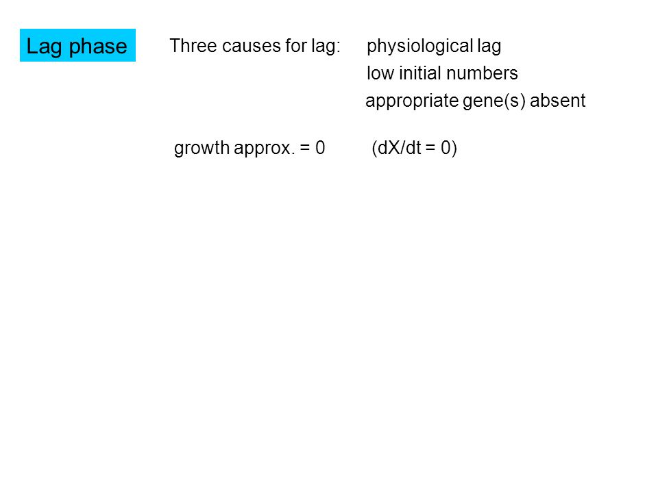 Lag phase Three causes for lag: physiological lag low initial numbers