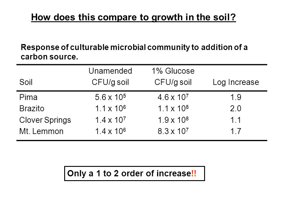 How does this compare to growth in the soil