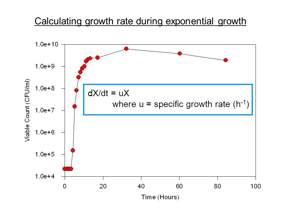Calculating growth rate during exponential growth