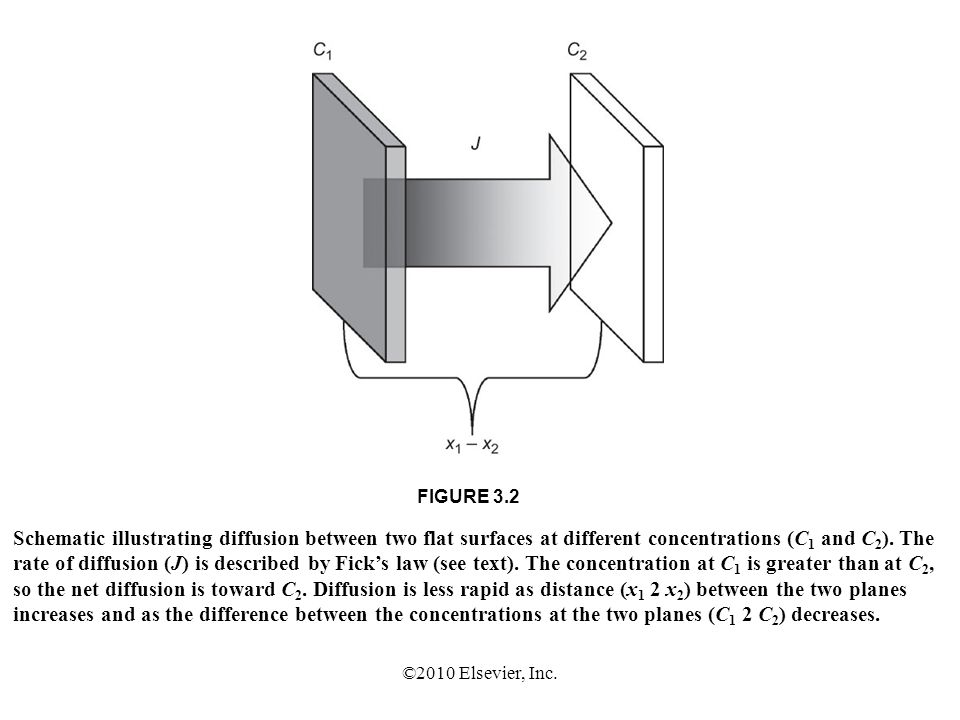 FIGURE 3.2 Schematic illustrating diffusion between two flat surfaces at different concentrations (C1 and C2). The.