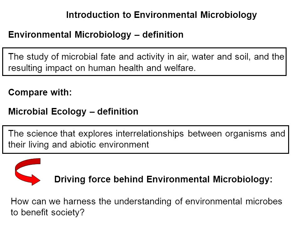 Environmental Microbiology – definition