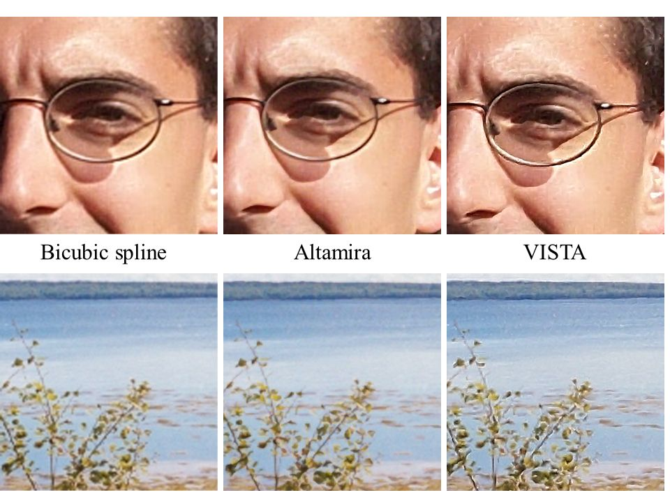 Bicubic spline Altamira VISTA