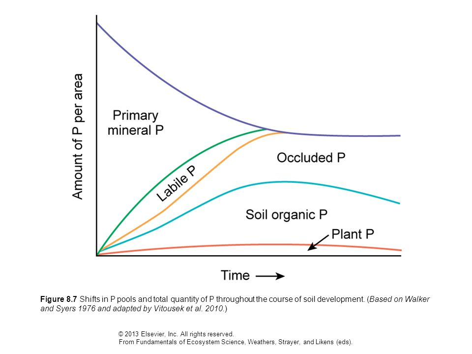Figure 8.7 Shifts in P pools and total quantity of P throughout the course of soil development. (Based on Walker and Syers 1976 and adapted by Vitousek et al. 2010.)