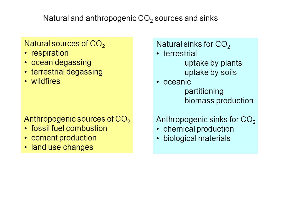 Natural and anthropogenic CO2 sources and sinks