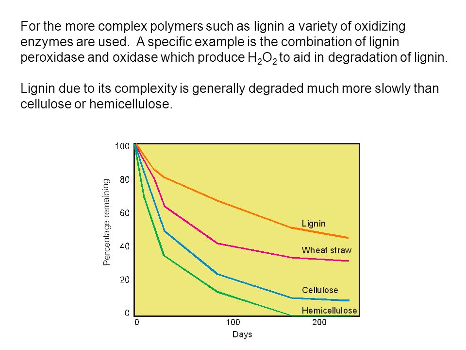 For the more complex polymers such as lignin a variety of oxidizing enzymes are used. A specific example is the combination of lignin peroxidase and oxidase which produce H2O2 to aid in degradation of lignin.