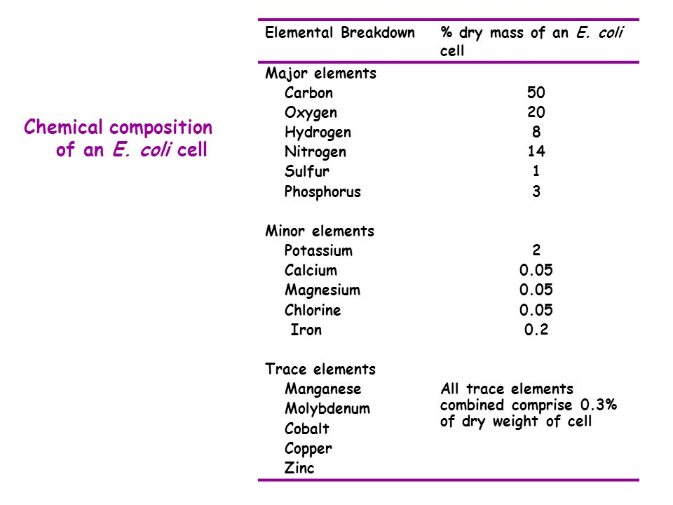 Chemical composition of an E. coli cell Elemental Breakdown