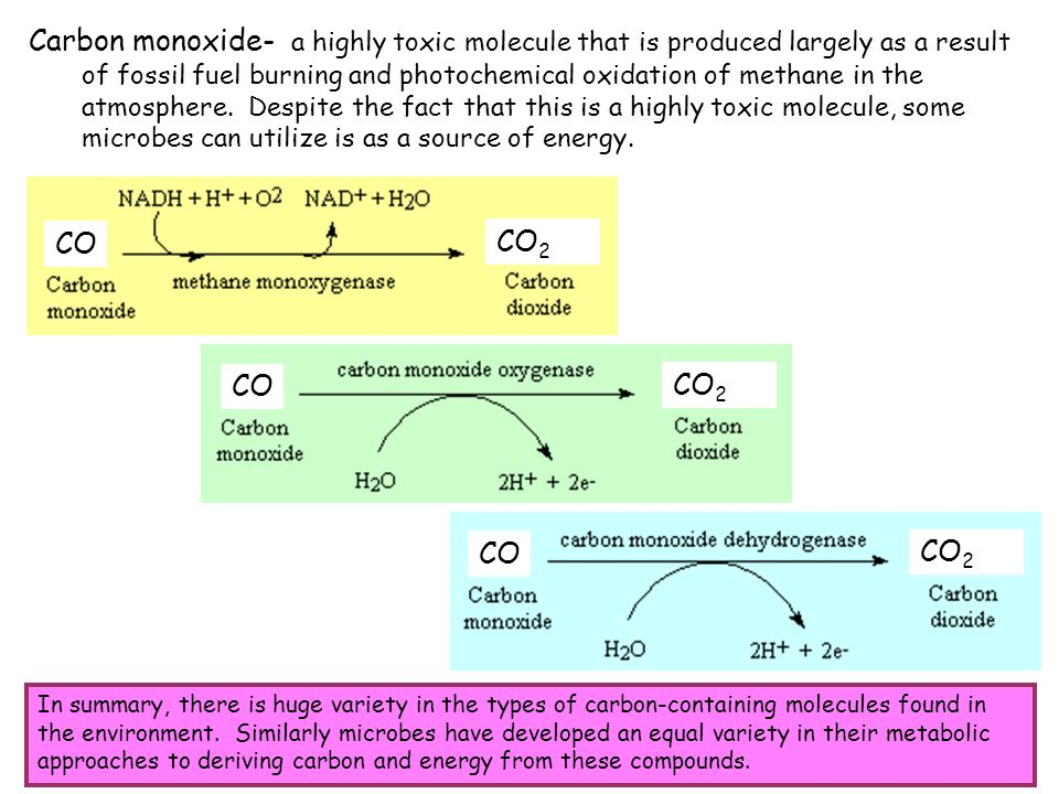 Carbon monoxide- a highly toxic molecule that is produced largely as a result of fossil fuel burning and photochemical oxidation of methane in the atmosphere. Despite the fact that this is a highly toxic molecule, some microbes can utilize is as a source of energy.