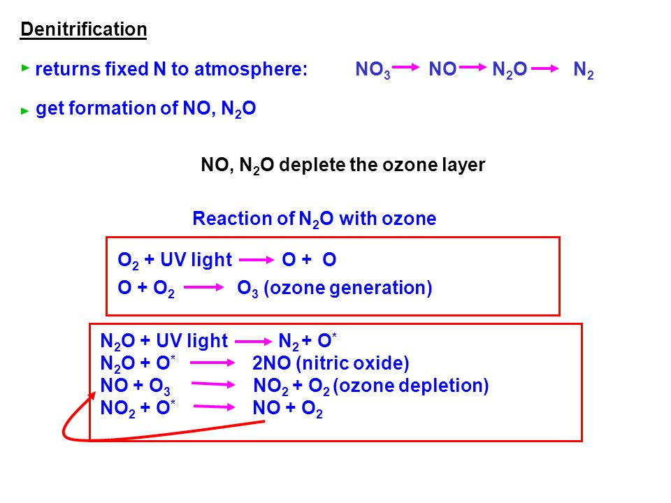 Denitrification returns fixed N to atmosphere: get formation of NO, N2O. NO3 NO N2O N2.