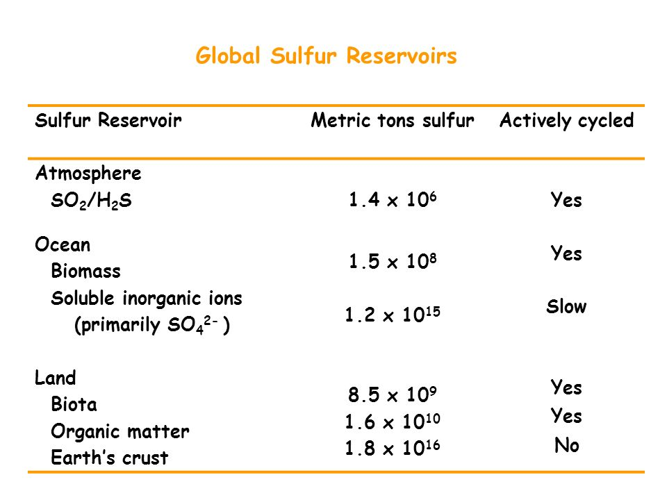 Global Sulfur Reservoirs