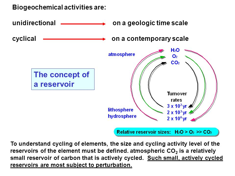 The concept of a reservoir Biogeochemical activities are: