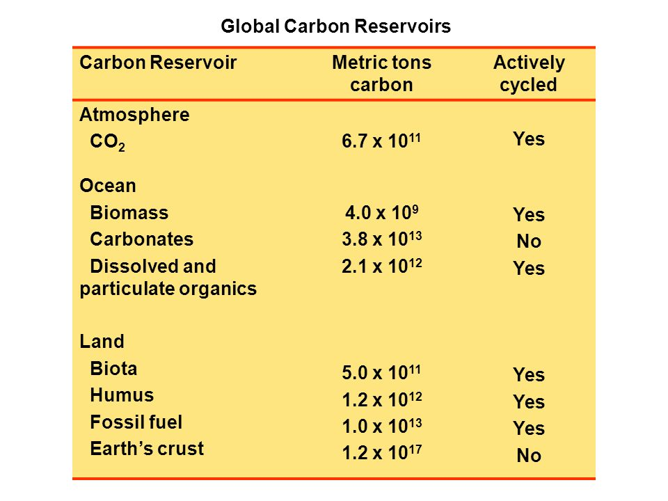 Global Carbon Reservoirs