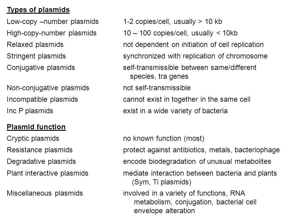 Types of plasmids Low-copy –number plasmids 1-2 copies/cell, usually > 10 kb. High-copy-number plasmids 10 – 100 copies/cell, usually < 10kb.