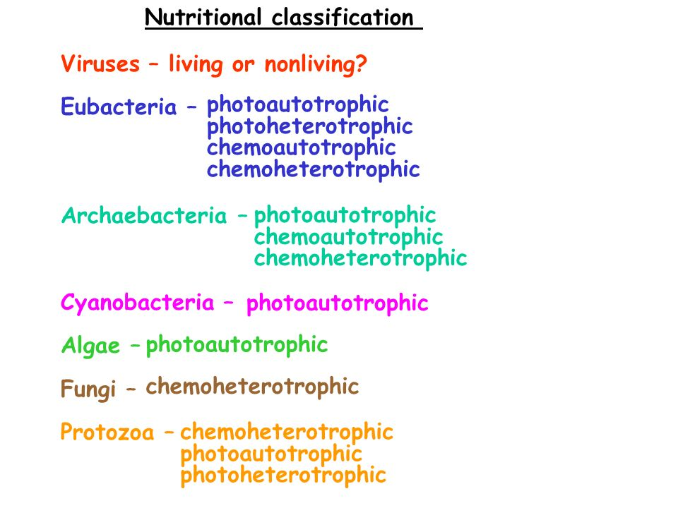 Nutritional classification