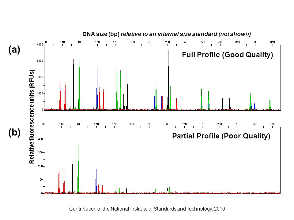 J.M. Butler (2009) Fundamentals of Forensic DNA Typing