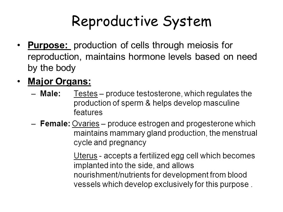 Reproductive System Purpose: production of cells through meiosis for reproduction, maintains hormone levels based on need by the body.