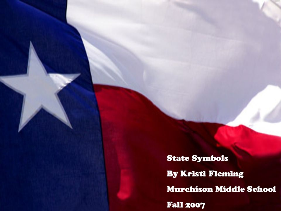 State Symbols By Kristi Fleming Murchison Middle School Fall Ppt