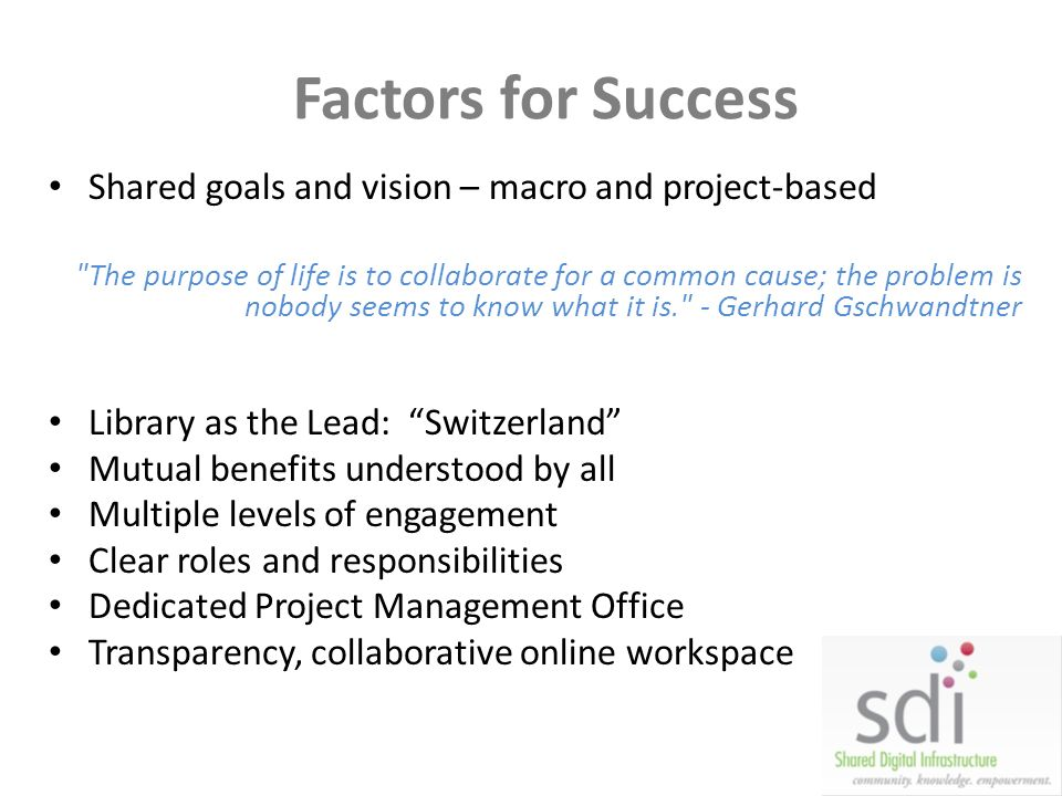 Factors for Success Shared goals and vision – macro and project-based