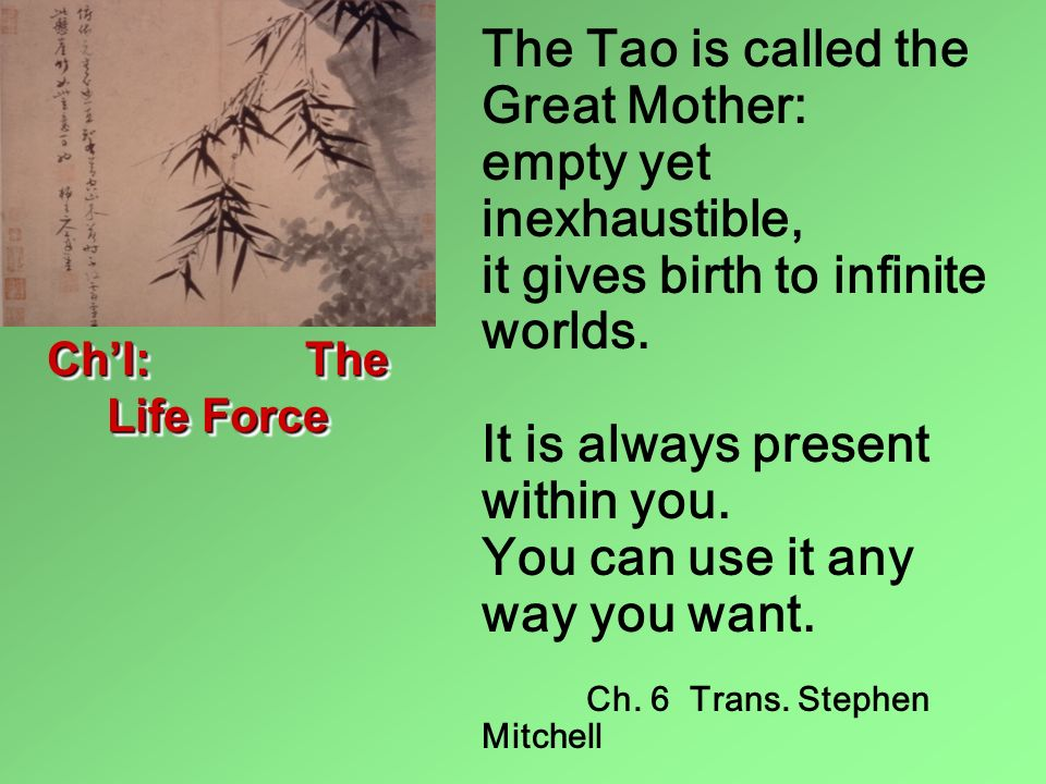 The Tao is called the Great Mother: empty yet inexhaustible, it gives birth to infinite worlds. It is always present within you. You can use it any way you want.
