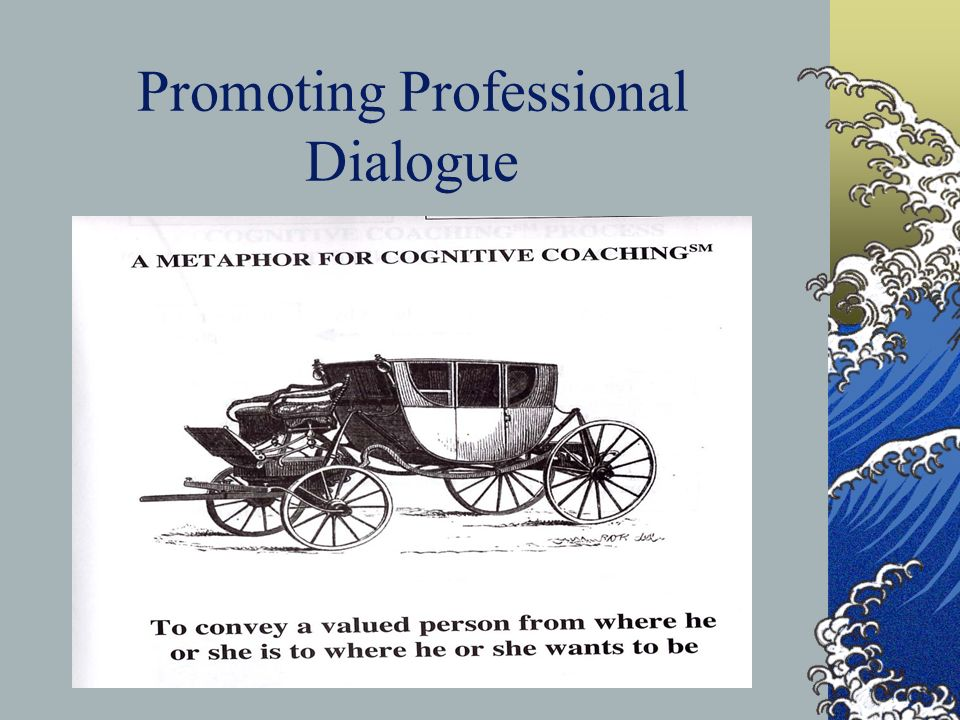 Promoting Professional Dialogue