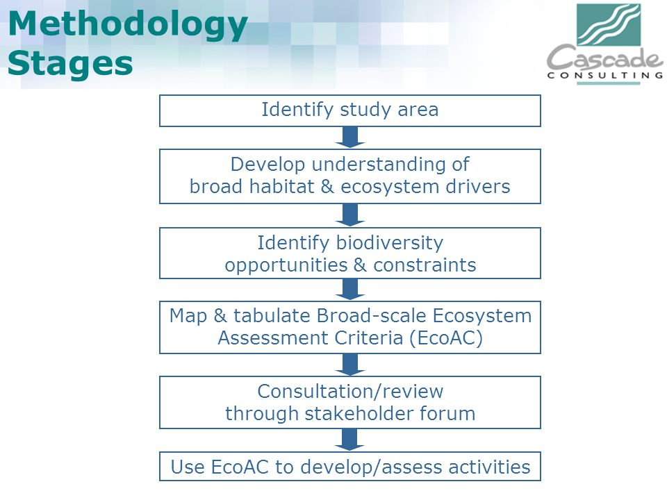 Methodology Stages Identify study area