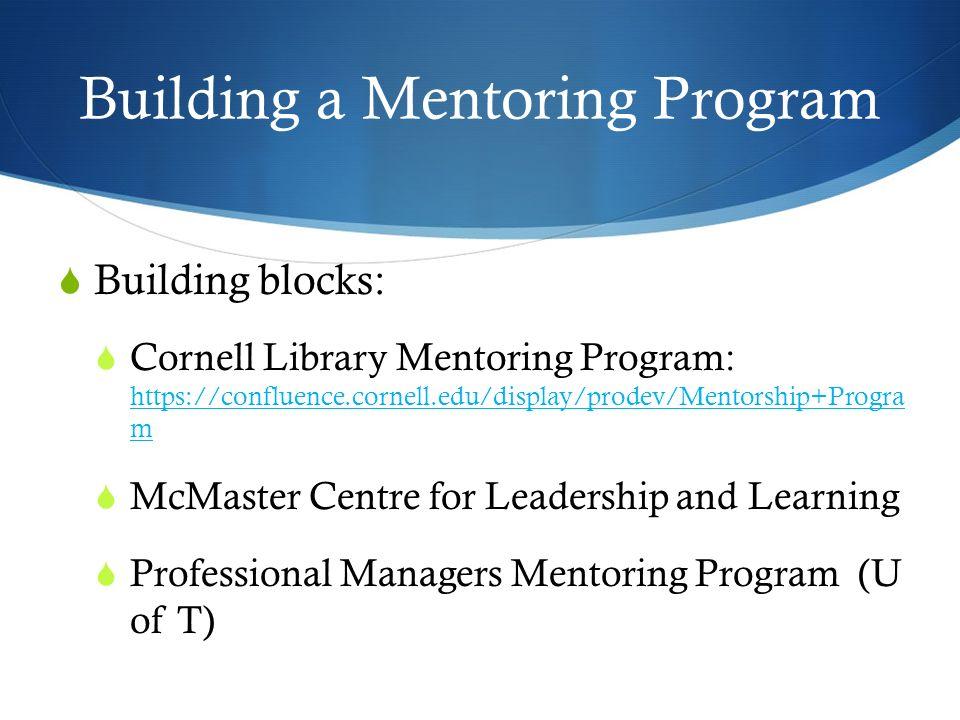 Building a Mentoring Program