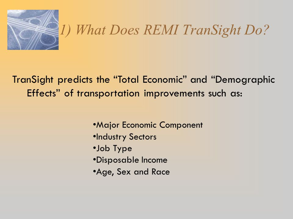 1) What Does REMI TranSight Do