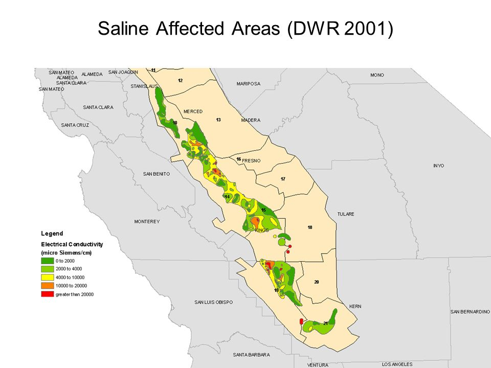Saline Affected Areas (DWR 2001)