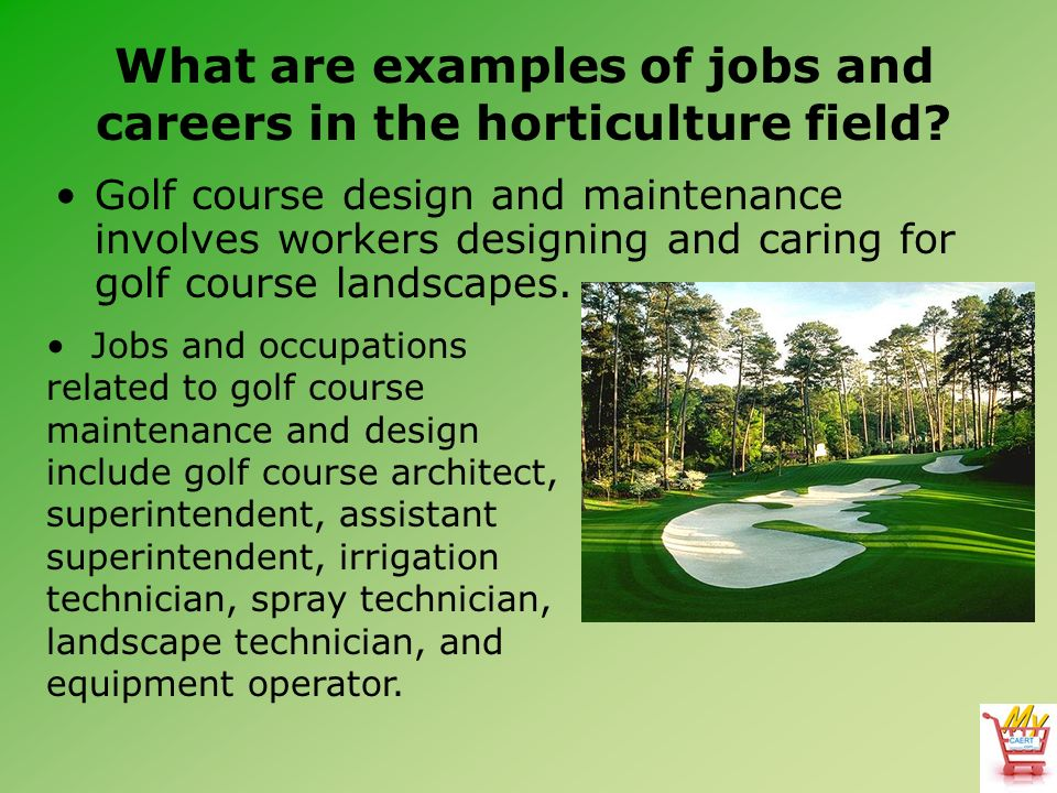 what are examples of jobs and careers in the horticulture field. Resume Example. Resume CV Cover Letter