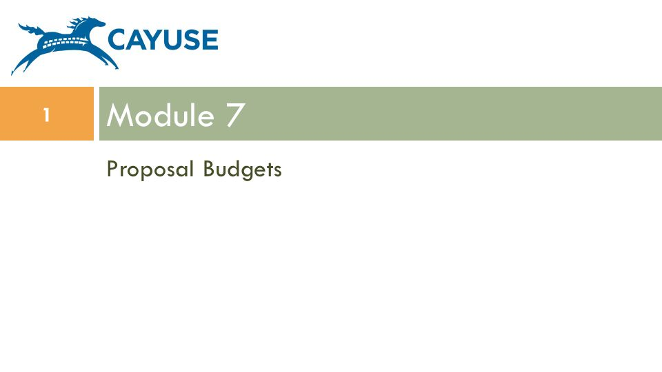 Module 7 Proposal Budgets