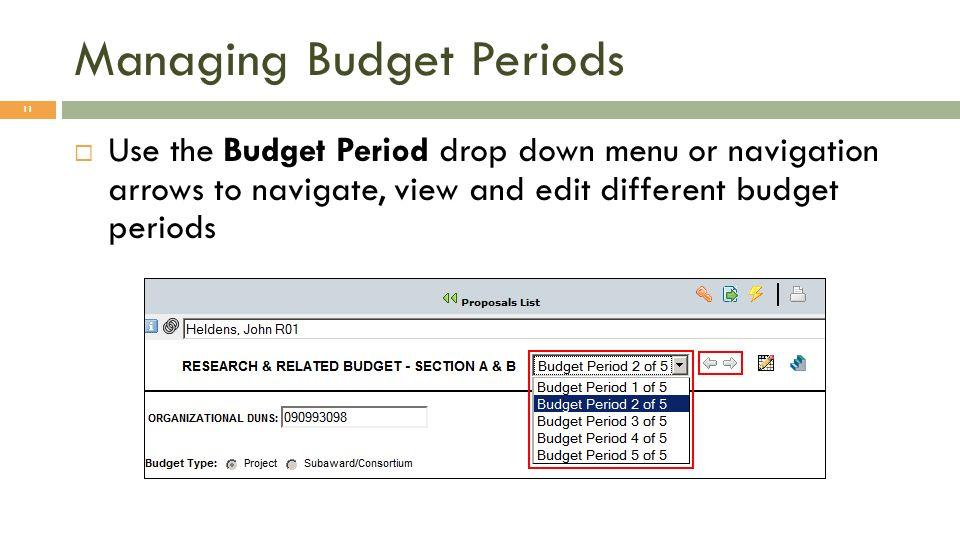 Managing Budget Periods